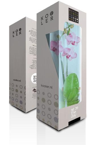 Orchidee-image